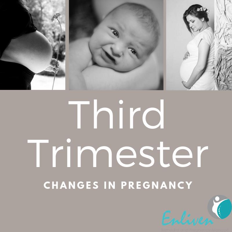 Pregnancy Third Trimester, Trimester 3